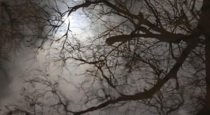 В Чепецке в ночные часы прогнозируют похолодание до -8 градусов