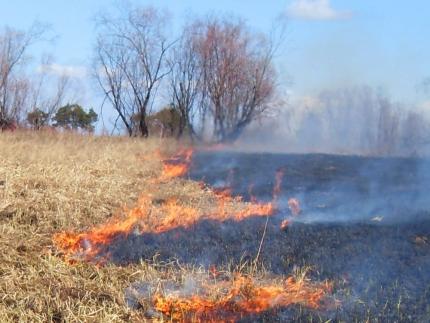 В Кирово-Чепецке и районе за день зафиксировано 3 пожара на открытой территории