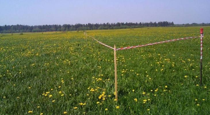 В Кирово-Чепецком районе 289 земельных участков предоставлено многодетным семьям