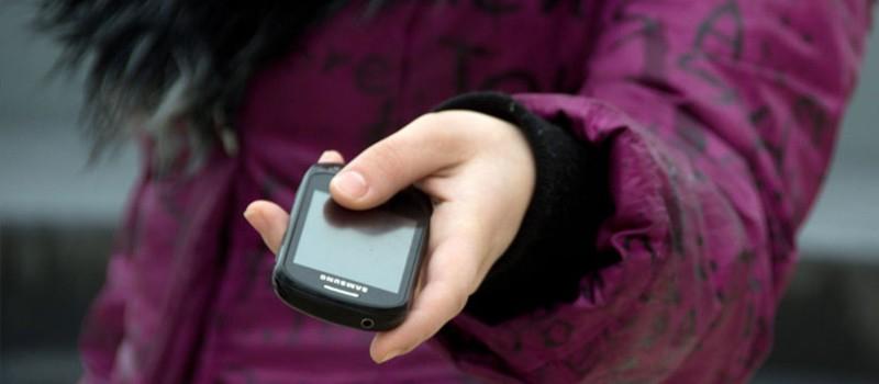 Чепчанка может получить срок за кражу двух телефонов
