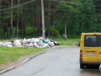 В Чепецке заметили стихийную свалку