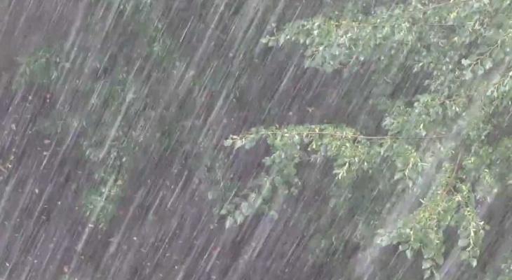 К дождям добавятся грозы: прогноз погоды на следующую неделю
