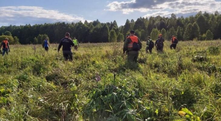 Кировчанин рассказал, как искал в лесу 5-летнюю девочку в Нижегородской области