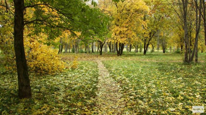 Стало известно, когда в Кирово-Чепецк вернется тепло