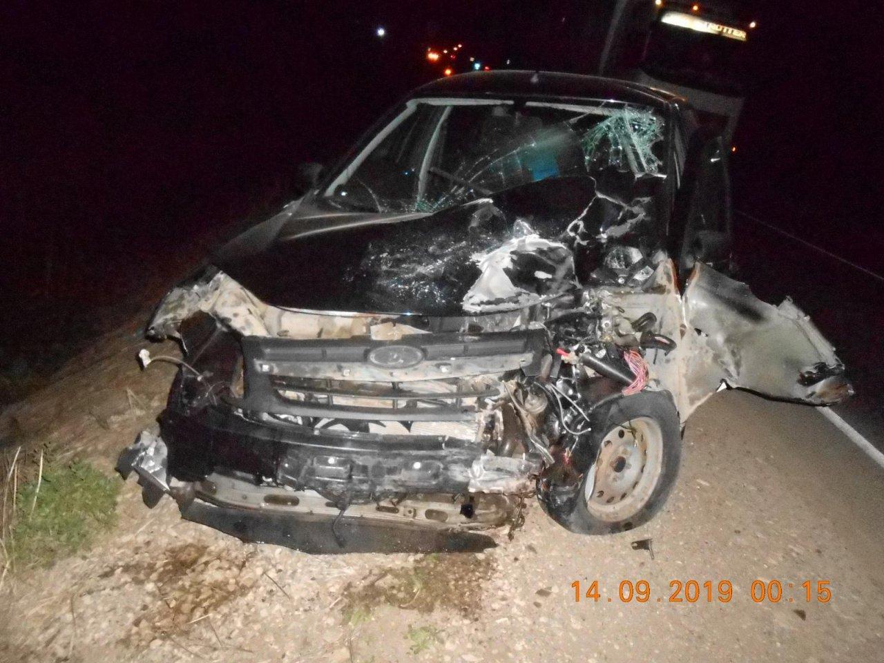 Из-за выбежавшего на трассу кабана столкнулись легковушки: есть пострадавшие