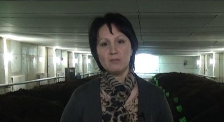 Путь от медсестры до бизнес-леди: в Кировской области женщина зарабатывает миллионы на червях