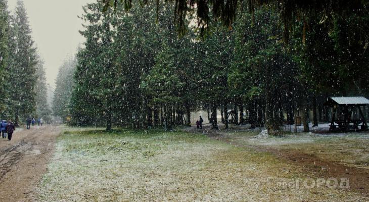 Чепчан ожидает аномально теплая погода: прогноз с 11 по 17 ноября