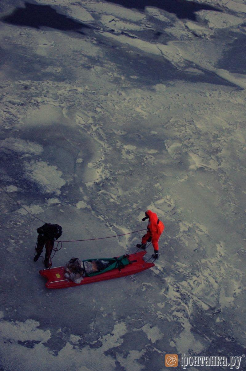 В Питере нашли тело кировчанки: девушка покончила с собой, спрыгнув с моста (Осторожно, шокирующие фото)