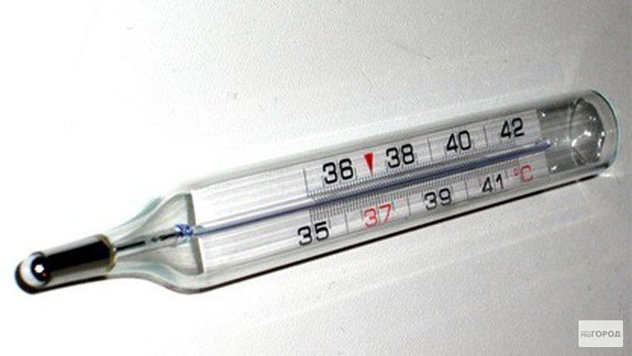 В Кирово-Чепецке во второй половине января прогнозируют эпидемию гриппа