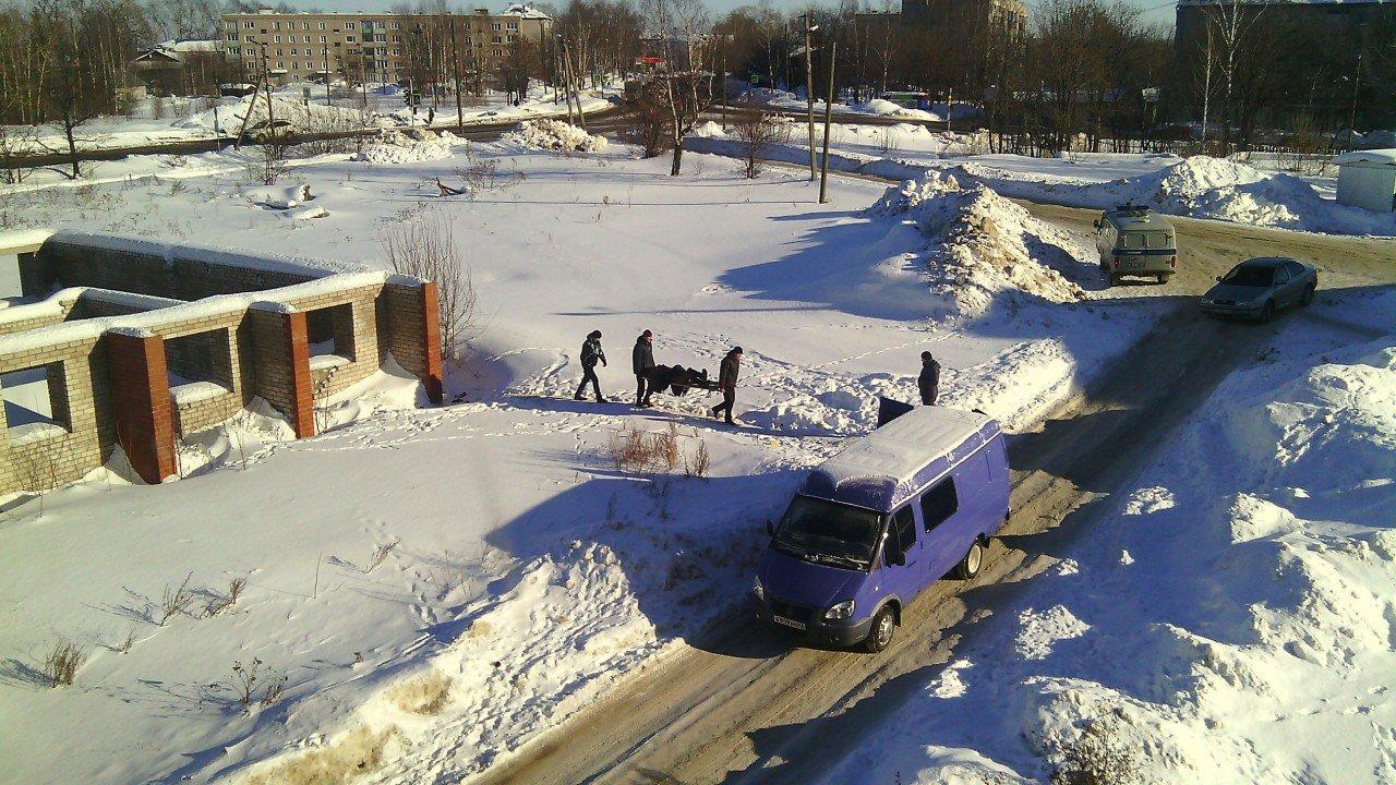В Кировской области в подвале нашли труп: погибший мог быть бомжем