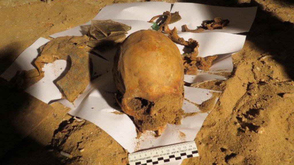 В Кировской области собака раскопала в лесу останки самоубийцы