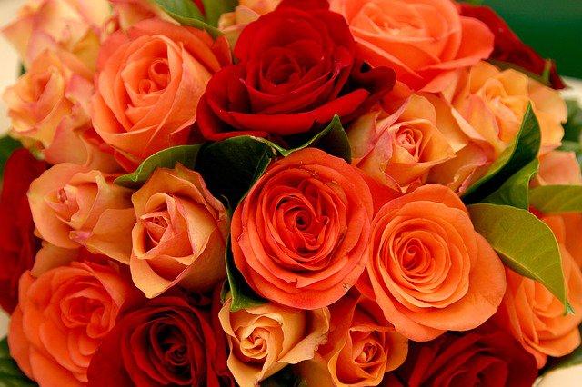 Чепчанину грозит тюрьма за то, что он украл букет роз для любимой