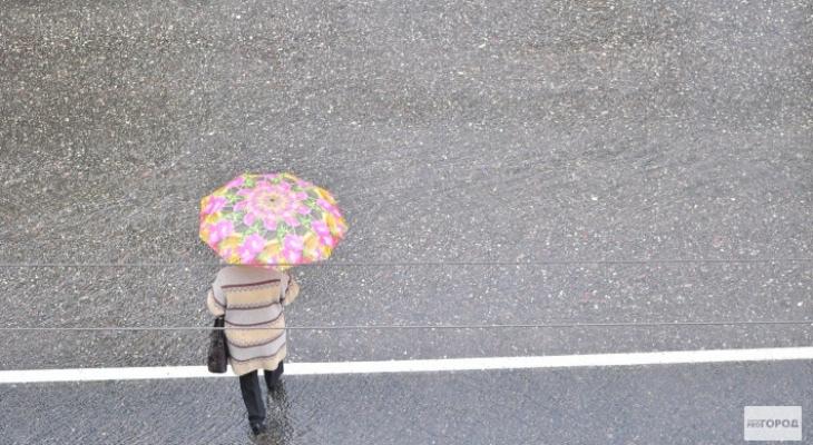 Дожди, грозы и незначительное потепление: прогноз погоды на рабочую неделю в Кирово-Чепецке