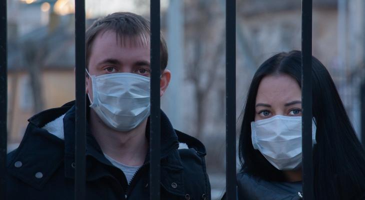 Второй этап снятия ограничений: что может открыться в Кировской области