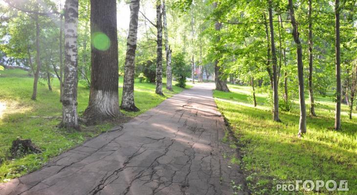В Кировской области ожидается похолодание до конца июня