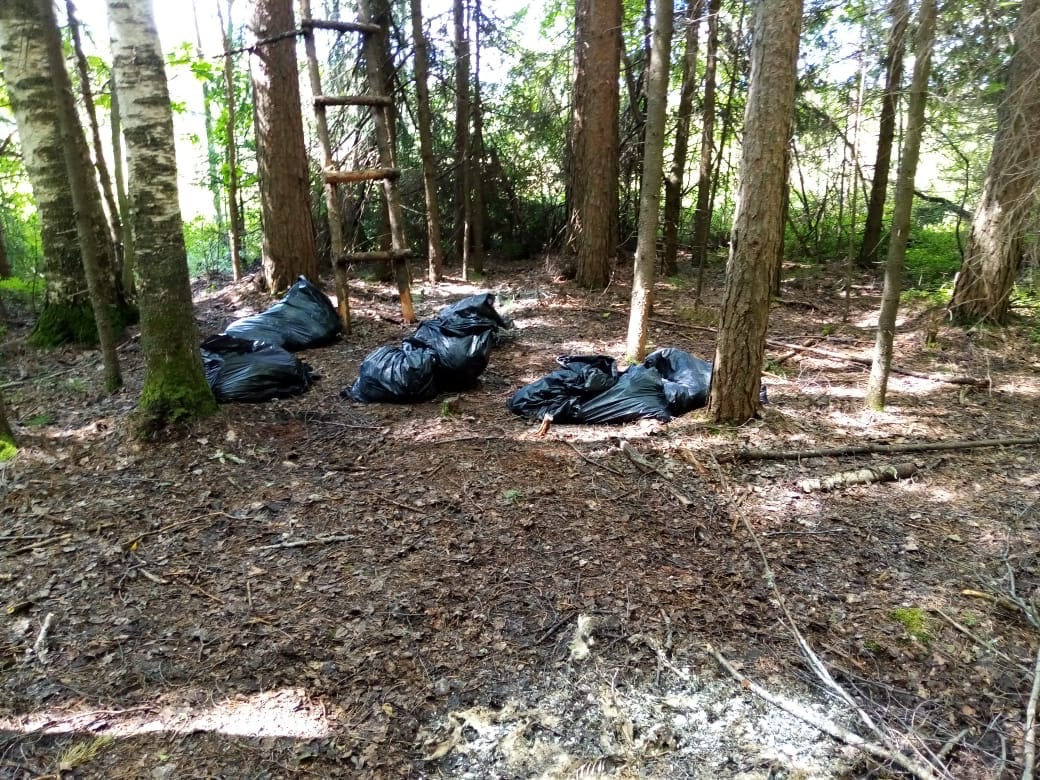 Вывозили из ветклиники: в Кирово-Чепецком районе ликвидировали свалку с десятками трупов домашних питомцев