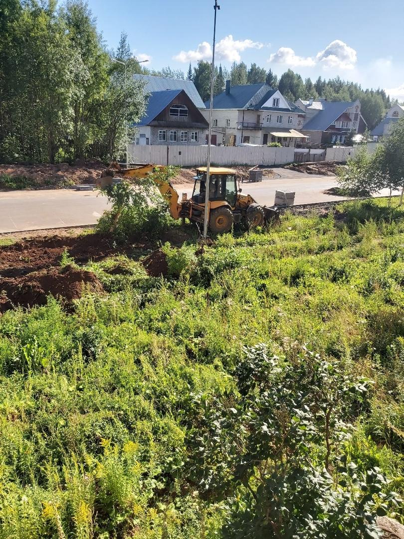 Что обсуждают в Кирово-Чепецке: пропажа высаженных берез и штрафы за перевоз грузов на крыше авто