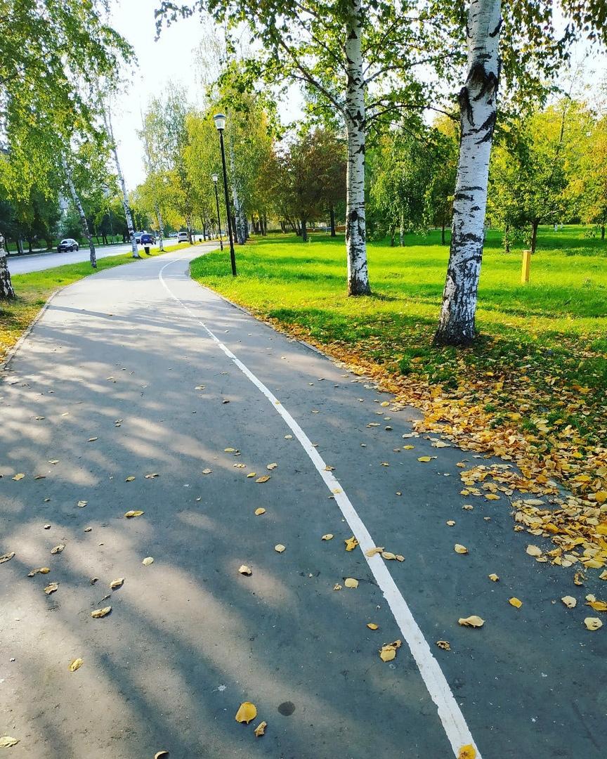 Два дождливых дня и солнце: прогноз погоды на неделю в Кирово-Чепецке