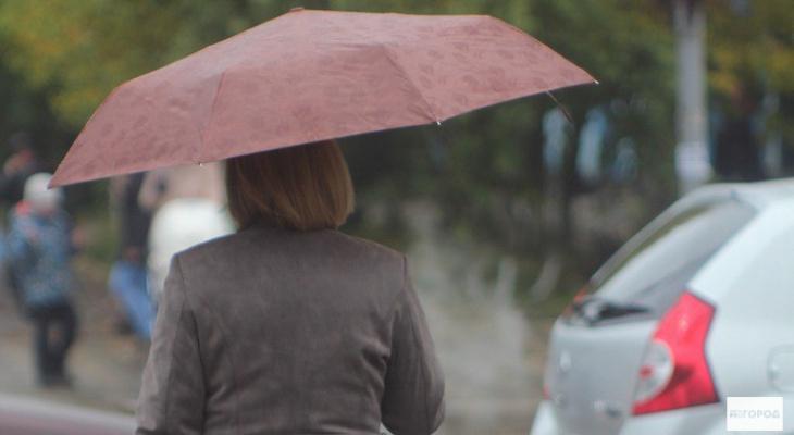 В город возвращаются дожди: прогноз погоды на неделю в Кирово-Чепецке