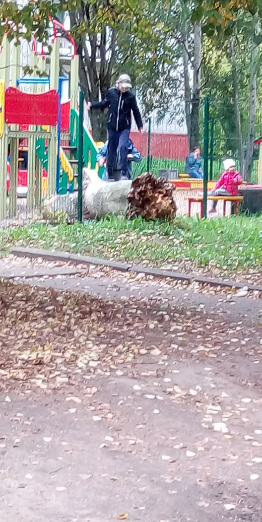 В Кирово-Чепецке на детскую площадку упало сухое дерево