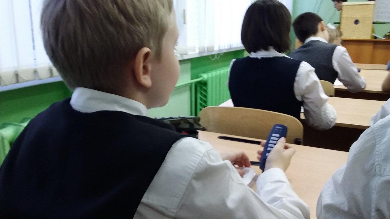 Чепчане смогут оценить качество образовательных услуг в городе