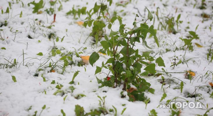 Дожди и снег: синоптик опубликовал прогноз погоды в регионе на октябрь