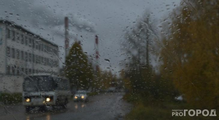Пасмурно и дождливо: известен прогноз погоды в Кирово-Чепецке на выходных